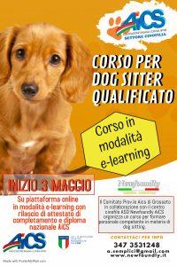 Corso Dog Sitter Online